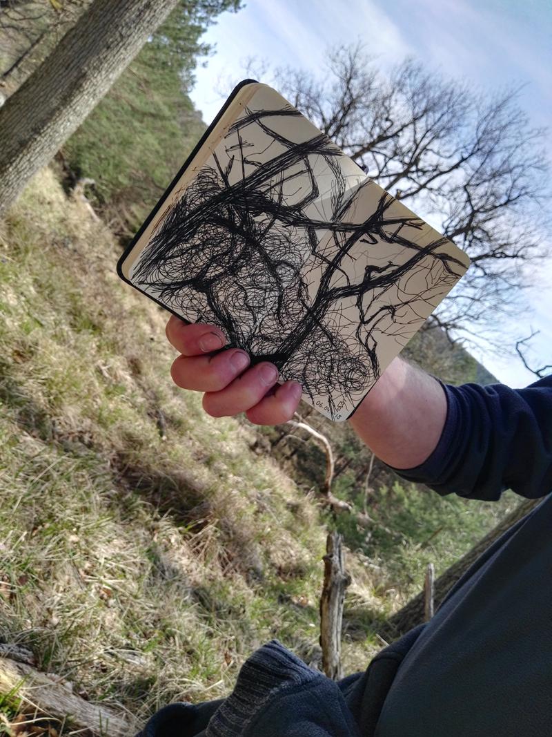 """Photo lauréate du concours """" Ma forêt"""" pour l'inscription de la forêt de Fontainebleau au patrimoine mondial de l'UNESCO"""